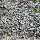 How to remove dog urine from gravel
