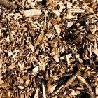 Cómo utilizar las astillas de madera en el jardín