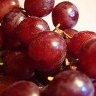 Comparación entre el resveratrol y la semilla de uva