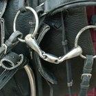 Como usar um bridão gag bit para cavalos