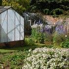 ¿Qué materiales necesitas para construir un invernadero?