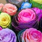 Tradiciones que usan flores de papel mexicanas