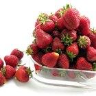 Cómo preparar y congelar fresas