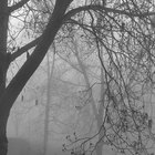 Como fazer sua própria neblina e fumaça