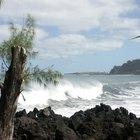 Quais danos as tsunamis causam?
