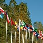 ¿Qué carreras pueden ser consideradas para relaciones internacionales?
