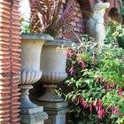 Greek Garden Ideas