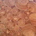 Como evitar rachaduras em trabalhos com madeira