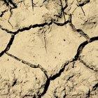 O que causa a alcalinização do solo?