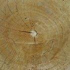 Como secar madeira em casa