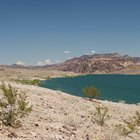 Pesca en Laughlin, Nevada