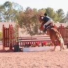 Hamstring injuries in horses
