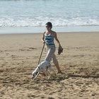 Playas para perros en San Diego