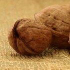 ¿Qué frutos secos contienen Omega 3?
