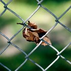 How much should chain-link fence cost to install?