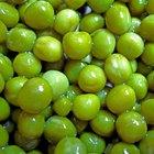 La diferencia entre los guisantes secos y los guisantes verdes