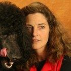 ¿Por qué los perros lamen la cara de los humanos?