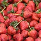 ¿Cómo decorar pasteles con fresas?