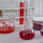 Cómo convertirte en un investigador científico