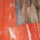 ¿Cuánto tiempo puedes mantener el pescado fresco en el refrigerador antes de comerlo?