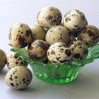 ¿Qué beneficios traen los huevos de codorniz?