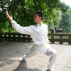 Como aprender Kung Fu básico estilo Tigre