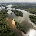 As dez principais características da Floresta Amazônica