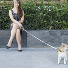 DIY: Dog Leash