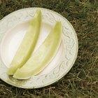 ¿Cuándo están listos para cosechar los melones dulces?