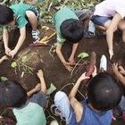 Cómo ablandar la tierra de tu jardín