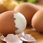 Scrambled Eggs on a Pan