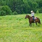 Los vaqueros famosos del lejano oeste