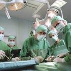 Alimentos que debes evitar después de la cirugía de extracción de la vesícula biliar