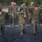 Army Officer Fitness Requirements