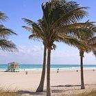 Los mejores lugares para ir de vacaciones en enero