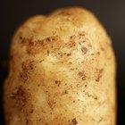 Como se livrar do cheiro de batata podre na despensa