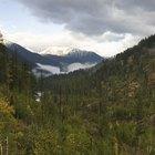 Diversion familiar y cosas que hacer en Grants Pass, Oregon