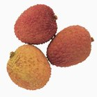 Lychee fruit has a bumpy pulp with a yellow to pink hue.