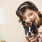 Ways to Keep Your Dog Healthy