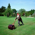 Do I use a roller on my lawn before or after the grass seed?