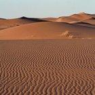 Similarities Between Deserts & Plains