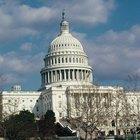 Cómo saber quiénes son los senadores de mi estado (en Estados Unidos)