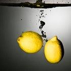 Gusanos sobre mi limonero