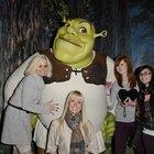 Fantasias caseiras do Shrek