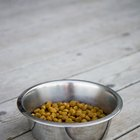 Making Homemade Crunchy Dog Food