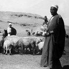 Cómo hacer un disfraz de pastor para los más pequeños