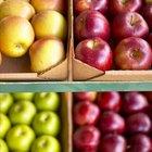 Red group of apples form autumn golden harvest