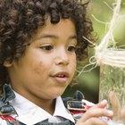 Cómo lidiar con un niño que tiene miedo a los insectos