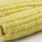 Cómo cocinar mazorcas de maíz en el microondas