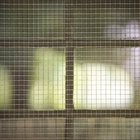 Screening for Cat Enclosures